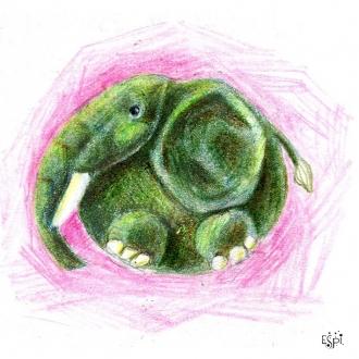 Elefantito-Inst-j
